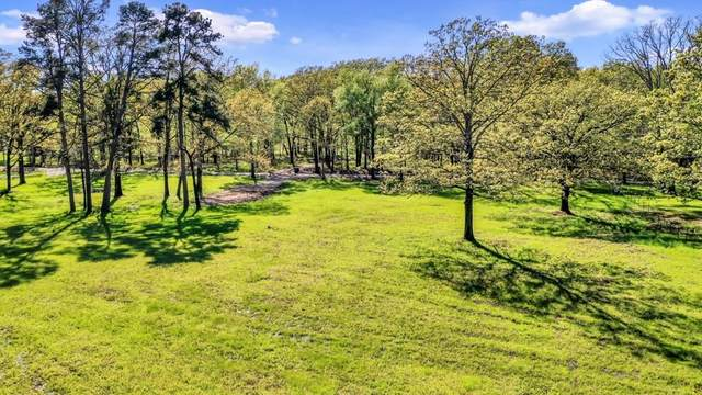 585 County Rd 4385 SE, Scroggins, TX 75480 (MLS #14305048) :: Maegan Brest | Keller Williams Realty