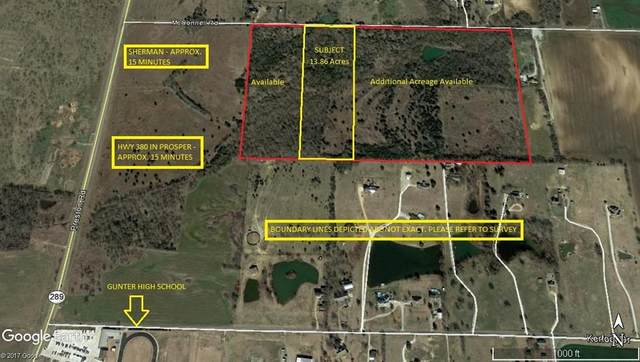 0 Tbd Mcconnell Road, Gunter, TX 75058 (MLS #14305178) :: The Kimberly Davis Group