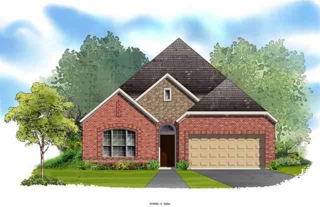 1517 Lavender Lane, Argyle, TX 76226 (MLS #14305641) :: The Kimberly Davis Group