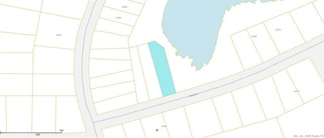 TBD Lakeway Drive, Mineola, TX 75773 (MLS #14305965) :: Post Oak Realty