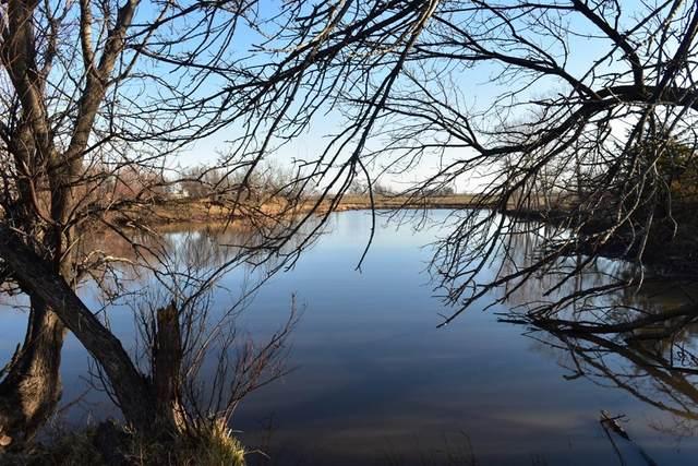 TBD River Road, Archer City, TX 76351 (MLS #14306464) :: ACR- ANN CARR REALTORS®