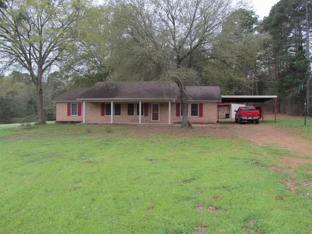 28 Welch Lane, Winnsboro, TX 75494 (MLS #14306469) :: The Kimberly Davis Group