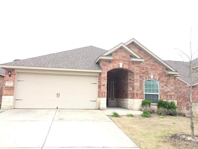 2313 Sable Wood Drive, Anna, TX 75409 (MLS #14307054) :: Real Estate By Design