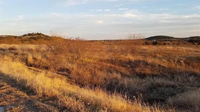 Lt 203 Evening Primrose Drive, Graford, TX 76449 (MLS #14307056) :: Real Estate By Design