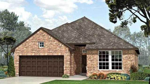 1419 Fox Hollow Road, Krum, TX 76249 (MLS #14307194) :: The Mauelshagen Group