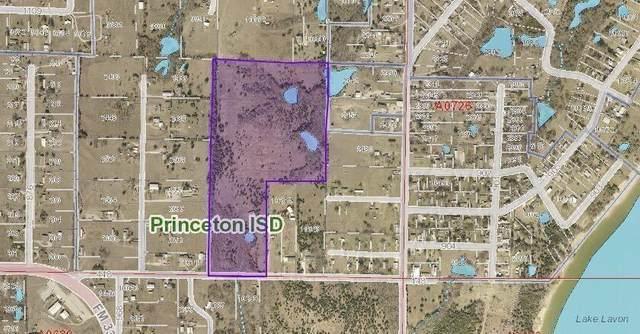 001 Fm 448, Princeton, TX 75407 (MLS #14307200) :: The Kimberly Davis Group