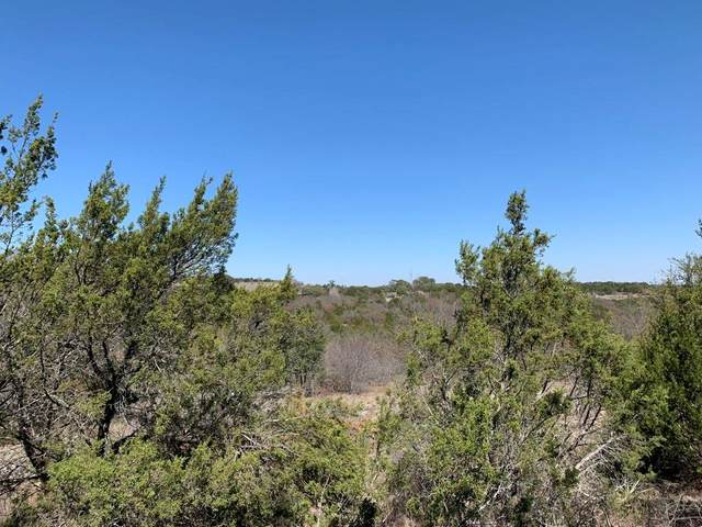 000 Anchors Way, Bluff Dale, TX 76433 (MLS #14308801) :: Post Oak Realty