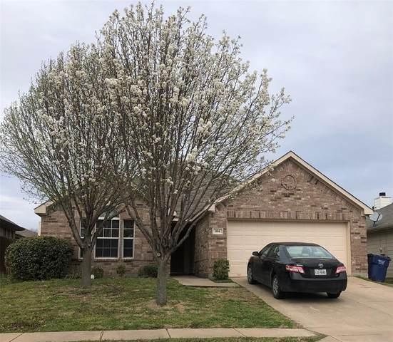804 Bamboo Drive, Anna, TX 75409 (MLS #14309419) :: The Kimberly Davis Group