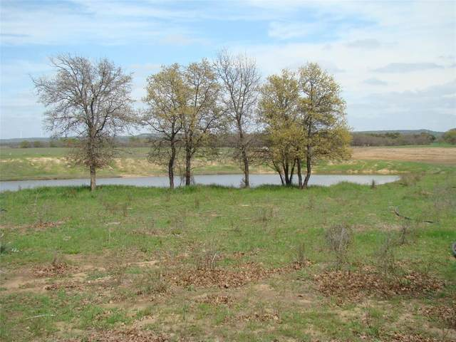 100 Ac E Co Road 553 E, Desdemona, TX 76445 (MLS #14309425) :: Justin Bassett Realty