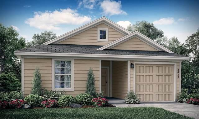 5525 Berea Street, Forney, TX 75126 (MLS #14309531) :: RE/MAX Landmark
