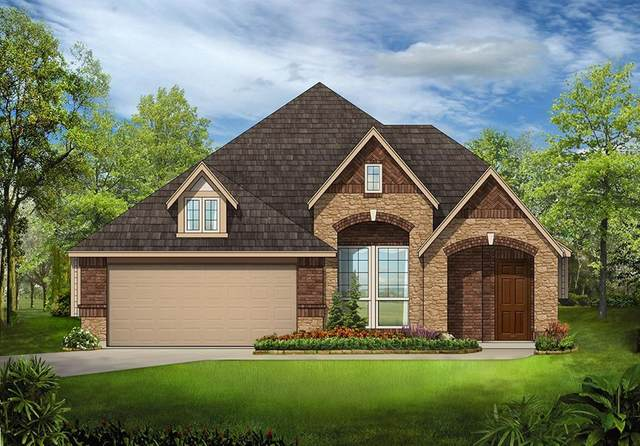 813 Lake Cove Drive, Little Elm, TX 75068 (MLS #14309950) :: All Cities USA Realty