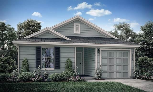 5517 Berea Street, Forney, TX 75126 (MLS #14310017) :: RE/MAX Landmark