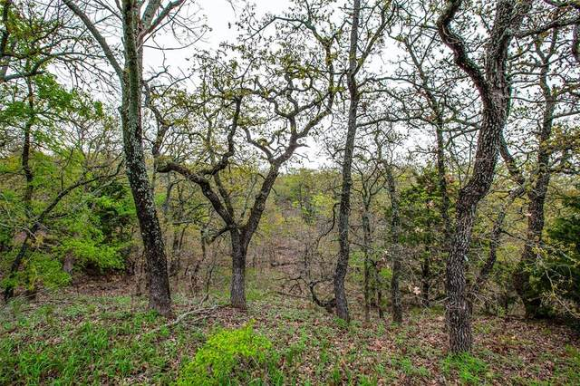 3015 B Canyon Bluff Court, Copper Canyon, TX 76226 (MLS #14310223) :: Trinity Premier Properties