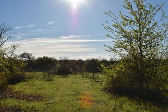 1700 Timber Creek Drive, Stephenville, TX 76401 (MLS #14310515) :: The Chad Smith Team