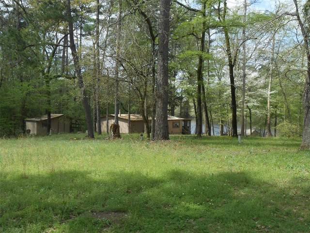 11125 Hamrick Lake, Winona, TX 75792 (MLS #14310688) :: The Welch Team