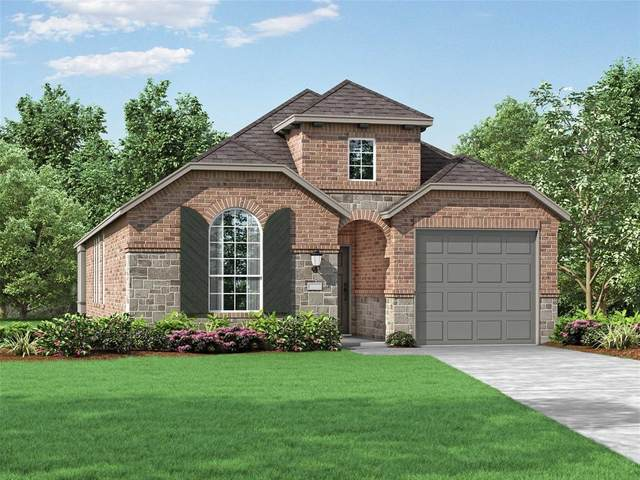 3933 Rochelle Lane, Heartland, TX 75126 (MLS #14312259) :: All Cities USA Realty