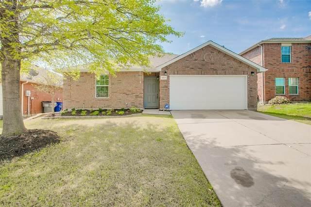 1412 Sun Breeze Drive, Little Elm, TX 75068 (MLS #14312435) :: The Kimberly Davis Group