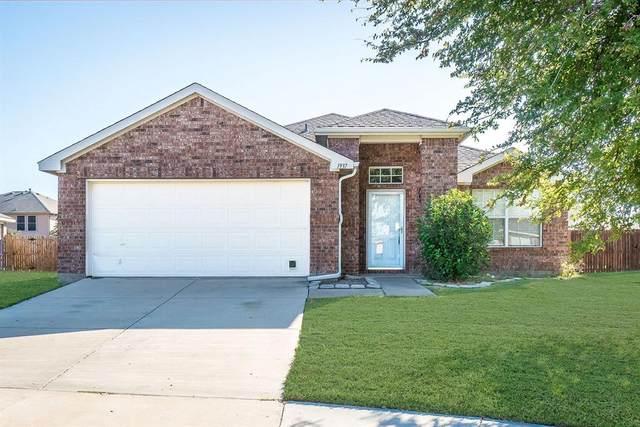 1937 Marble Falls Lane, Little Elm, TX 75068 (MLS #14312520) :: The Kimberly Davis Group
