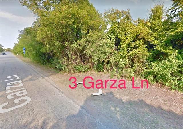 3 Garza Lane, Little Elm, TX 76208 (MLS #14312755) :: Team Tiller