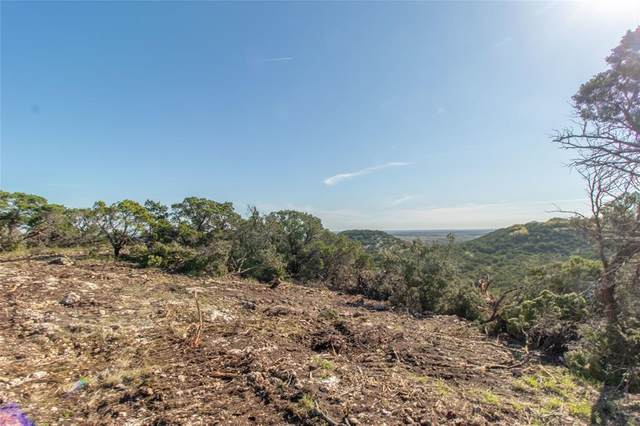 000 2007, Glen Rose, TX 76043 (MLS #14313015) :: Potts Realty Group