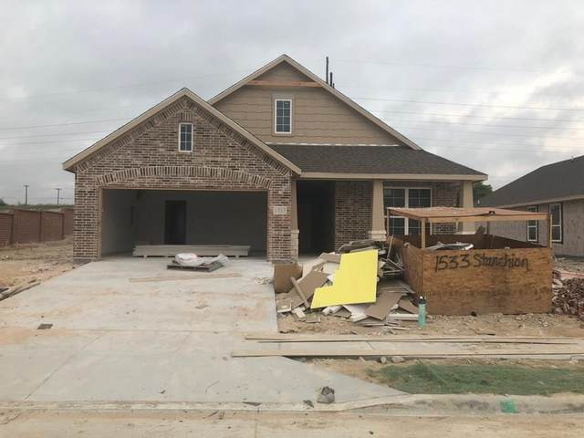 1533 Stanchion Way, Weatherford, TX 76087 (MLS #14313142) :: Potts Realty Group