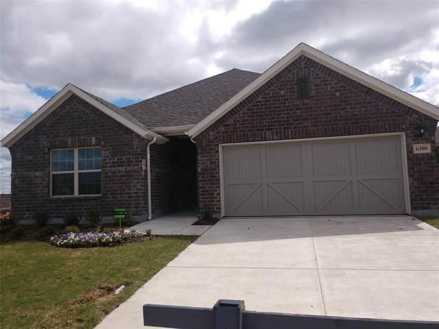 6200 Painswick Drive, Celina, TX 75009 (MLS #14314157) :: Tenesha Lusk Realty Group