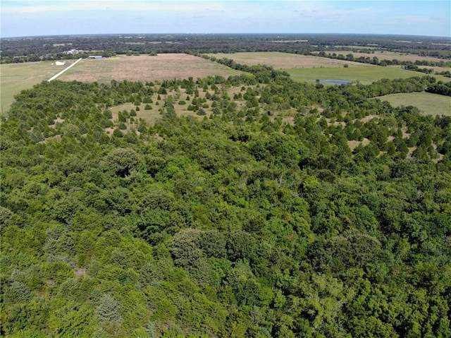 L6 County Rd 4519, Wolfe City, TX 75496 (MLS #14314424) :: The Chad Smith Team