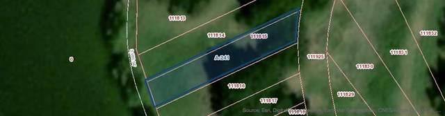 111815 P0220, Navarro, TX 75144 (MLS #14314709) :: Maegan Brest | Keller Williams Realty