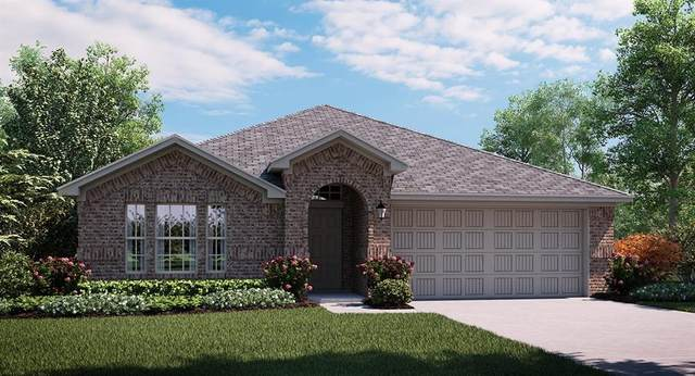2449 Evening Stone Drive, Cross Roads, TX 76227 (MLS #14314719) :: The Kimberly Davis Group