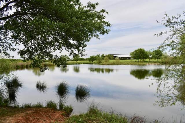 4044 County Road 2436, Como, TX 75431 (MLS #14315337) :: The Hornburg Real Estate Group