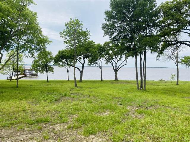 461 Sun Valley, Mabank, TX 75147 (MLS #14315437) :: The Welch Team
