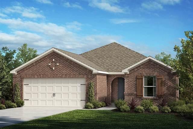 2617 Warren Lane, Aubrey, TX 76227 (MLS #14315815) :: Real Estate By Design