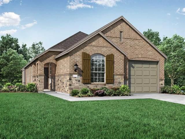 3902 Spencer Lane, Heartland, TX 75126 (MLS #14316681) :: Justin Bassett Realty