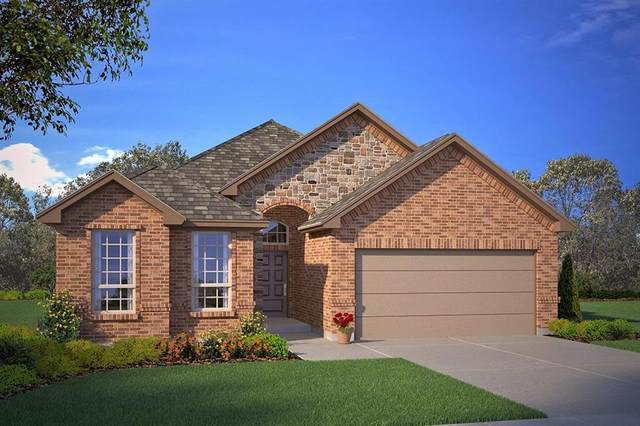 3537 Camden Creek Road, Krum, TX 76249 (MLS #14316817) :: Trinity Premier Properties