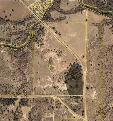 0000 Fm 585, Brownwood, TX 76801 (MLS #14316892) :: Trinity Premier Properties