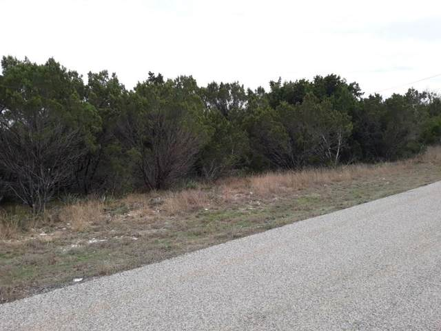 3317 Woodlake Drive, Granbury, TX 76048 (MLS #14316983) :: All Cities USA Realty