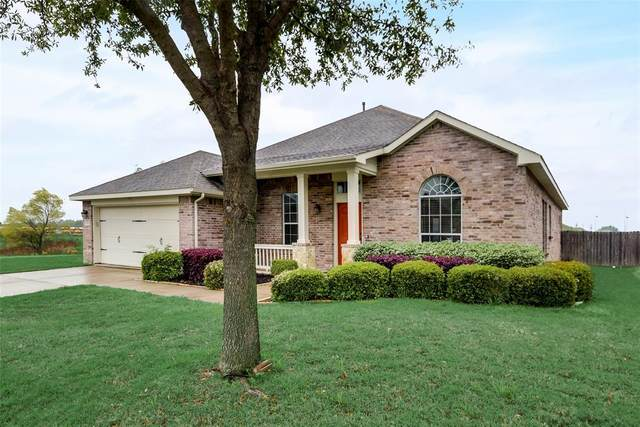 210 Chinaberry Trail, Forney, TX 75126 (MLS #14317450) :: NewHomePrograms.com LLC