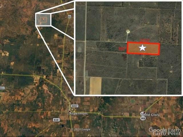 TBD 38.2 Acres, Aspermont, TX 79502 (MLS #14317882) :: RE/MAX Pinnacle Group REALTORS