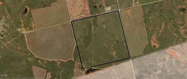 TBD3 Hayter Road, Abilene, TX 79601 (MLS #14318019) :: Ann Carr Real Estate