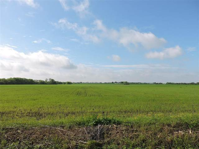 504 Gosnell Road, Whitewright, TX 75491 (MLS #14318030) :: All Cities USA Realty