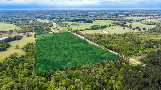 TBD County Road 278, Buffalo, TX 75833 (MLS #14318053) :: Real Estate By Design