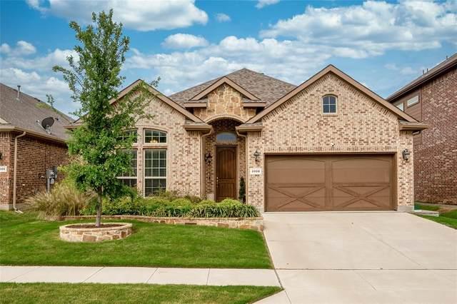 2008 San Marino Lane, Lewisville, TX 75077 (MLS #14318747) :: The Hornburg Real Estate Group