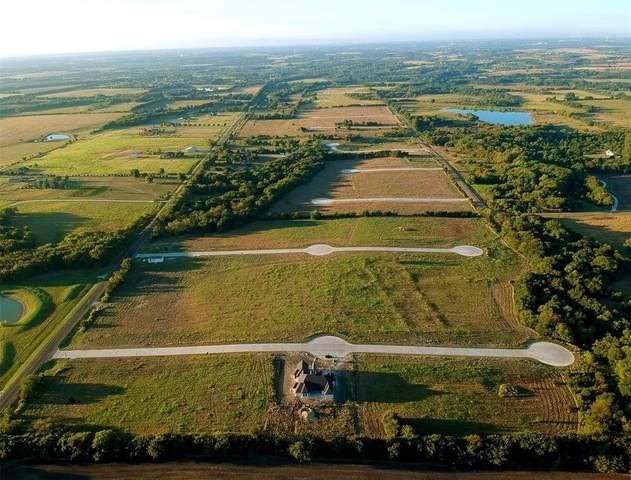 30 Buchanan Court, Weston, TX 75097 (MLS #14319349) :: The Hornburg Real Estate Group
