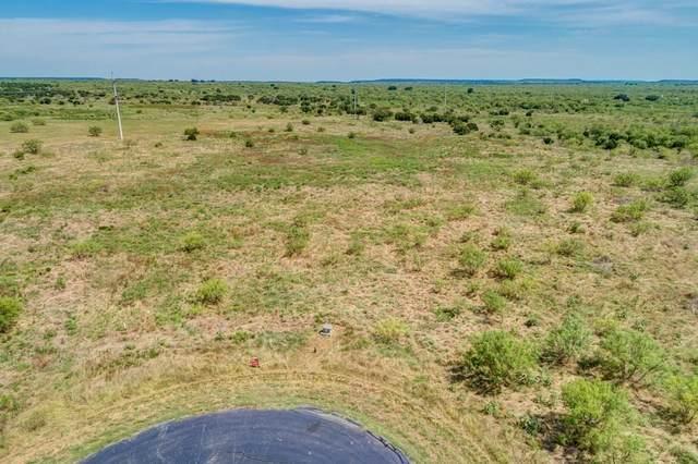 1120 Pheasant Court, Possum Kingdom Lake, TX 76449 (MLS #14319646) :: Tenesha Lusk Realty Group