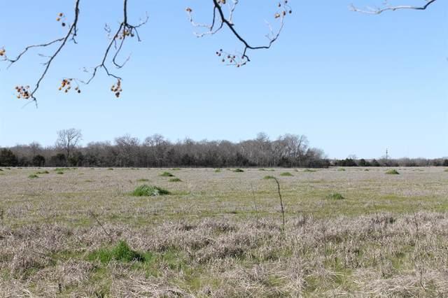 Tract 8 Cr 2216, Caddo Mills, TX 75135 (MLS #14322328) :: The Kimberly Davis Group