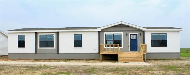 341 Terri Drive, Collinsville, TX 76233 (MLS #14323281) :: All Cities USA Realty