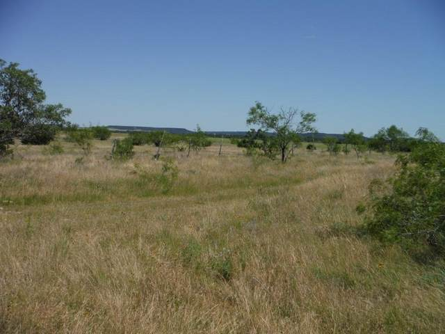 Tract 6 Private Road 3642, Copperas Cove, TX 76522 (MLS #14323676) :: Potts Realty Group