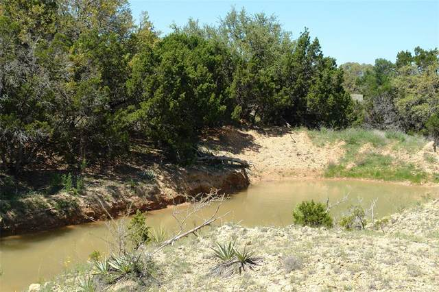 TBD Cr 529, Mullin, TX 76864 (MLS #14324131) :: The Hornburg Real Estate Group