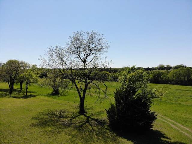 TBD County Road 4640, Trenton, TX 75490 (MLS #14324766) :: Baldree Home Team