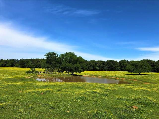 3242 Fm 2948, Como, TX 75431 (MLS #14327732) :: The Hornburg Real Estate Group
